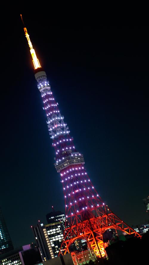 20120113_4611.jpg