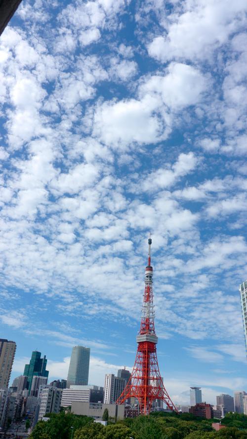 20120816_0847.jpg