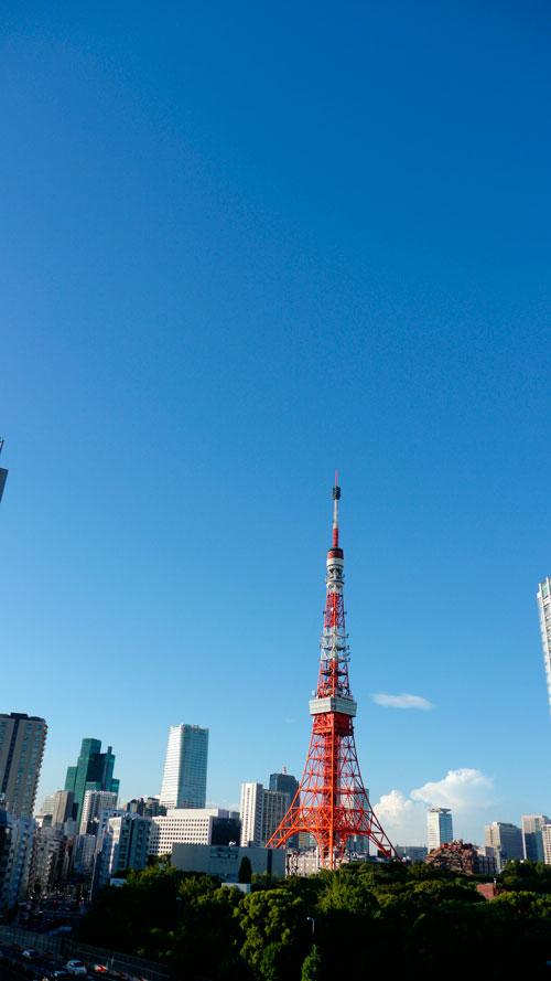 20120915_0619.jpg