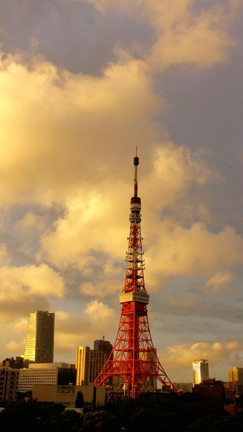 20120919_0848.jpg