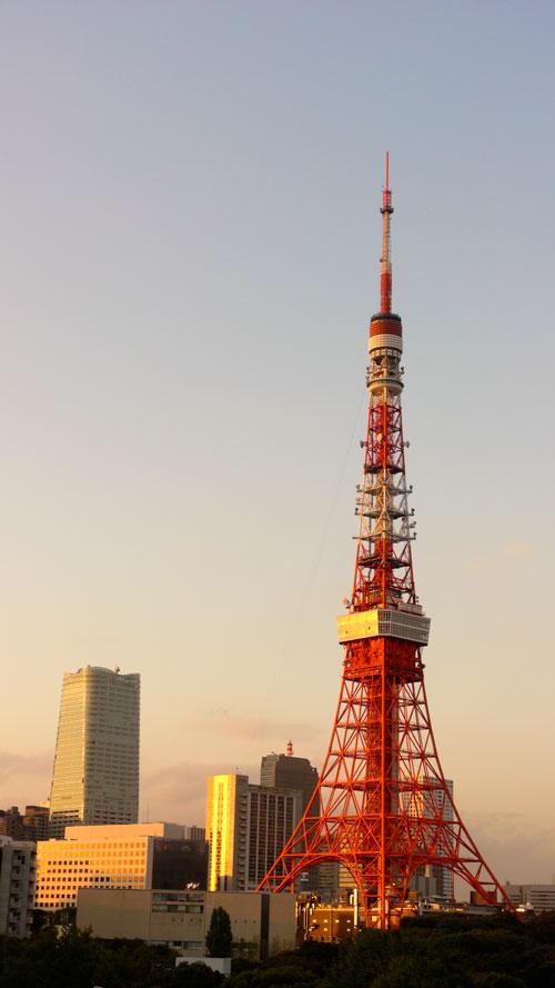 20121020_1539.jpg