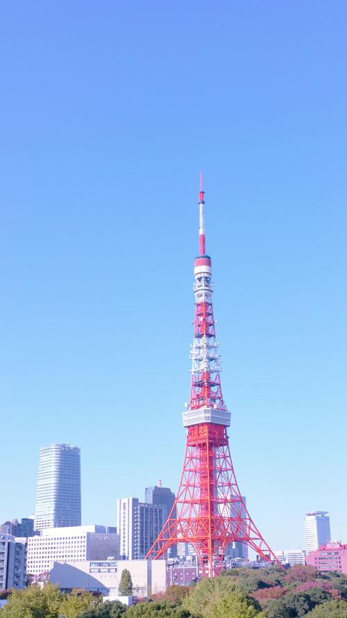 20121120_2238.jpg